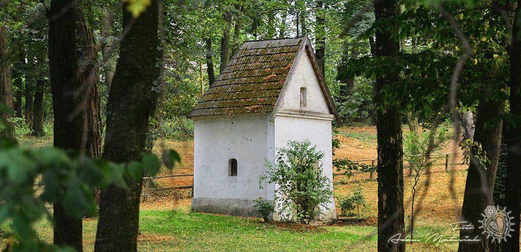 Sołectwo - Świdnik