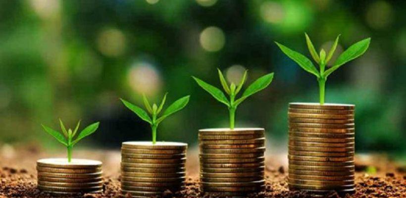 Dotacje dla młodych rolników od ARiMR
