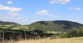 Projekt Uproszczonych Planów Urządzenia Lasu