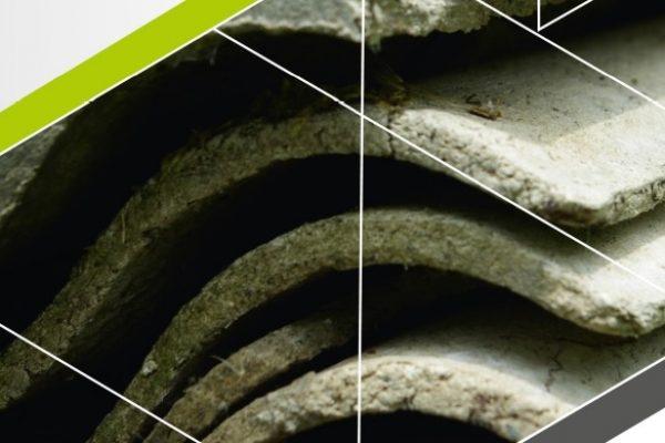 Unieszkodliwiamy azbest